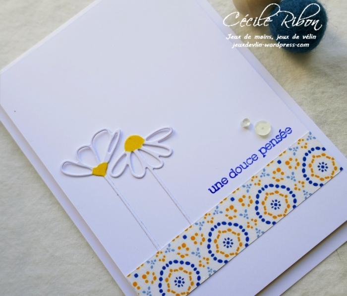 Carte SG2 - P1070162