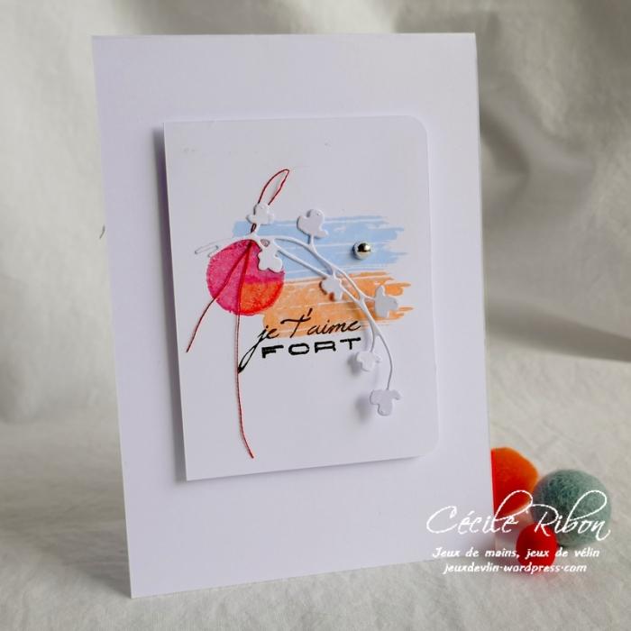 Carte CBBB16 - P1070567
