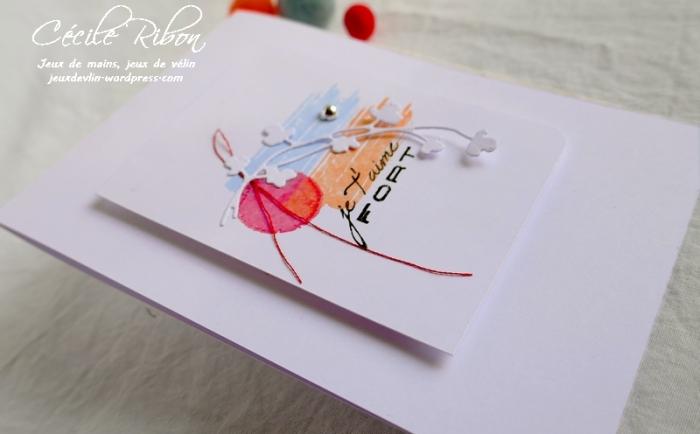 Carte CBBB16 - P1070575