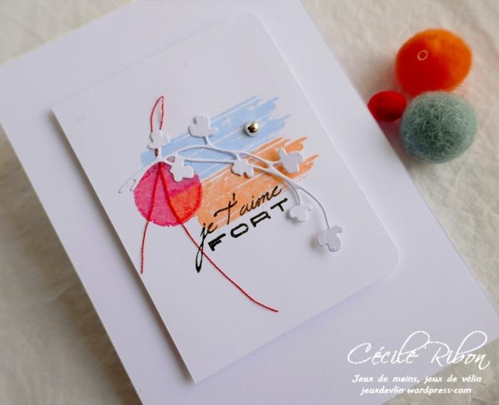 Carte CBBB16 - P1070587