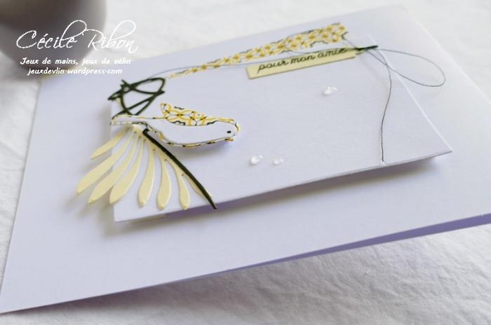 Carte CBBB17 - P1080158