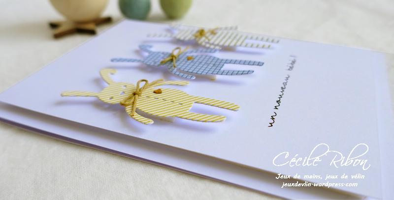 Carte CTD556 - P1080018