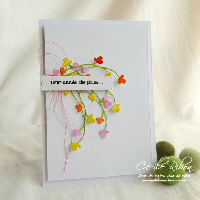 Carte CTD558#1 - P1080413