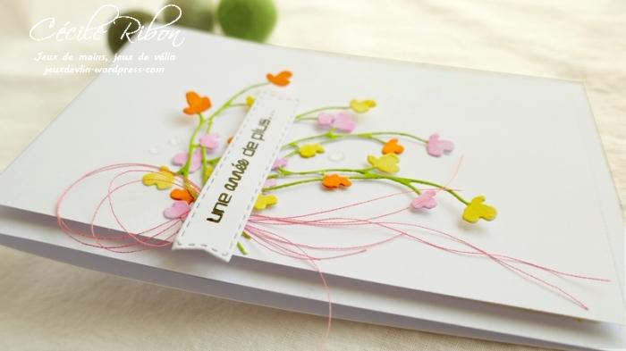 Carte CTD558#1 - P1080418