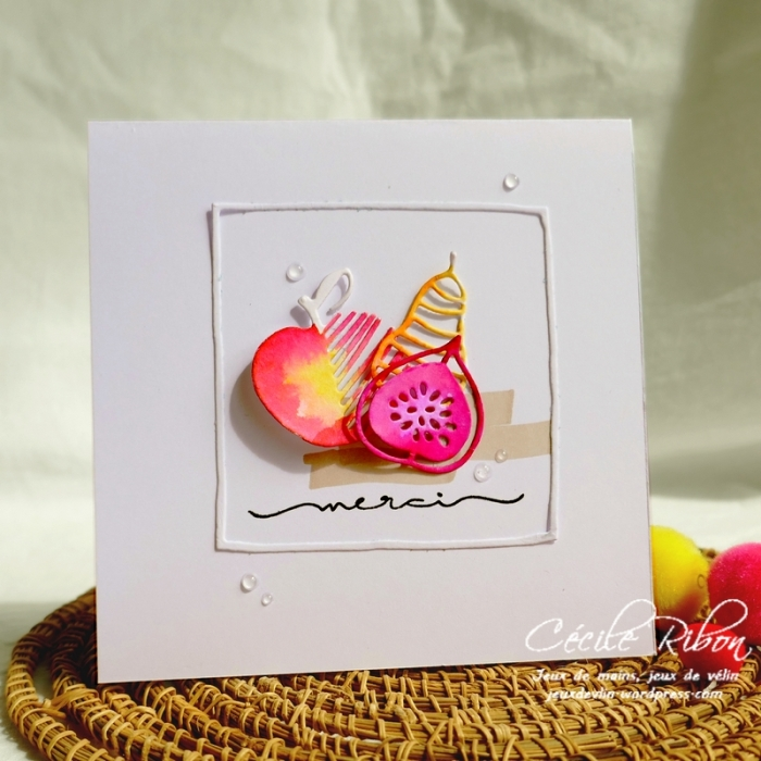 Carte Maniak205 - P1070895