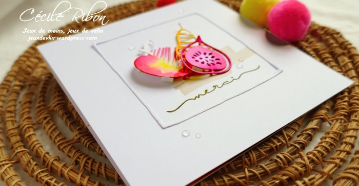 Carte Maniak205 - P1070903