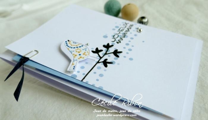 Carte Thierry - P1070684