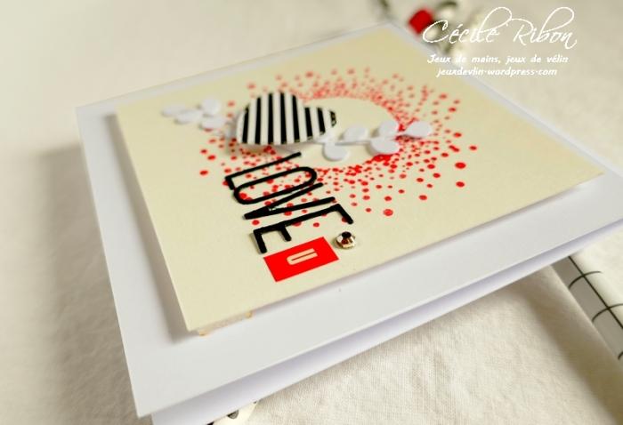 Carte AID60 - P1080729