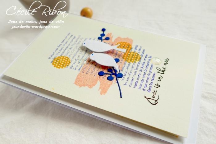 Carte CTD559#2 - P1080636