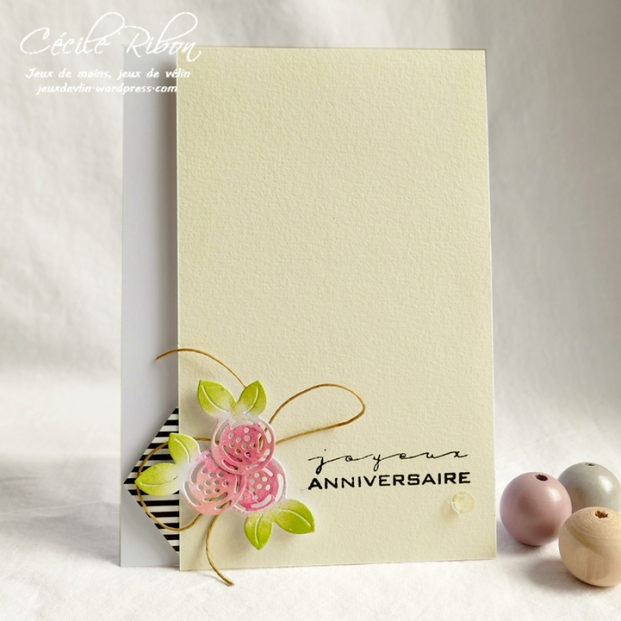 Carte CTS338 - P1080698