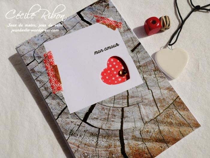 Carte CTS339 - P1080898
