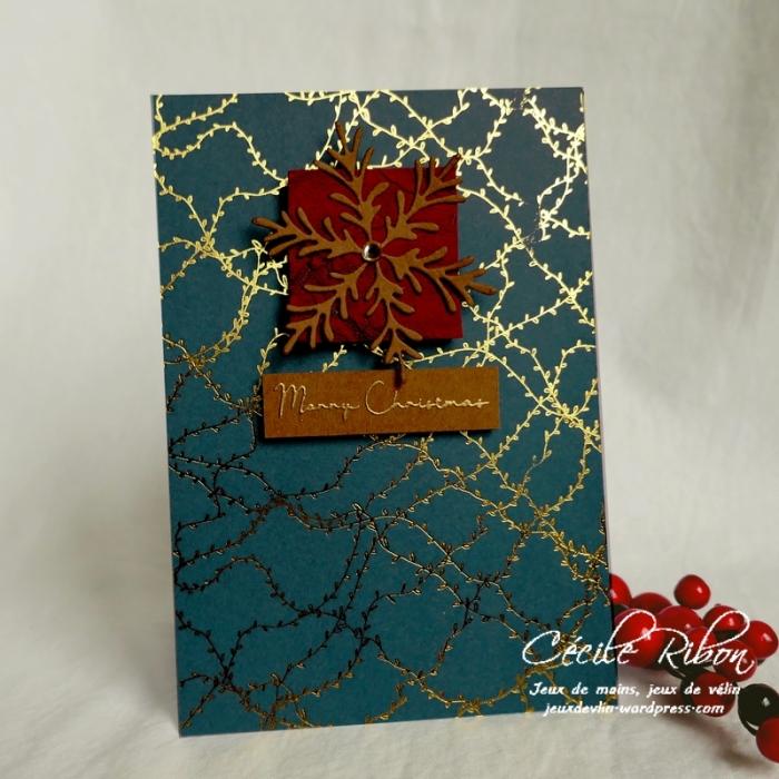 Carte CTS340 - P1090092