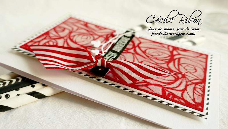 Carte CTS341 - P1090230