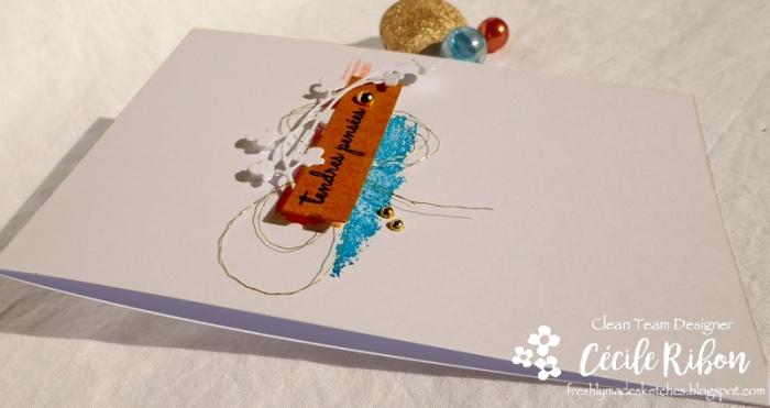 Carte FMS403 - P1080801