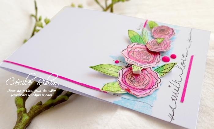 Carte FUSION53 - P1080564