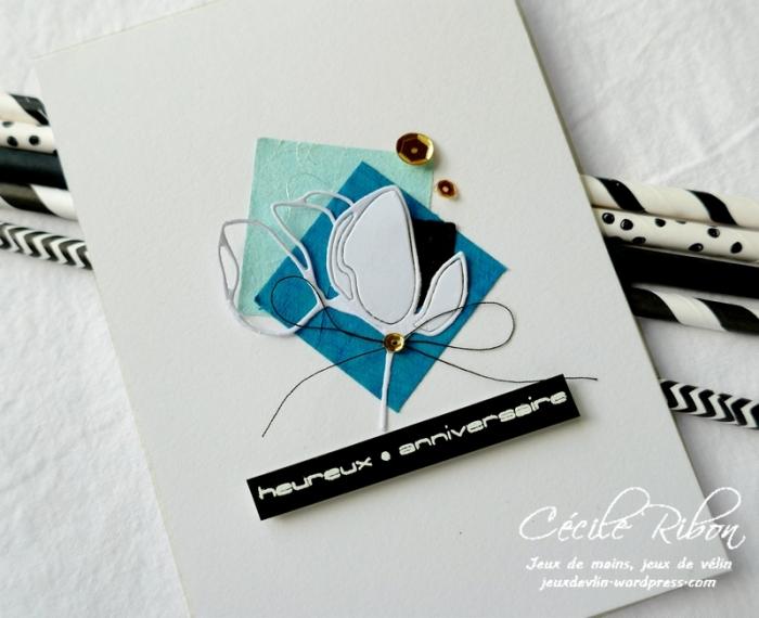 Carte Arielle - P1090351
