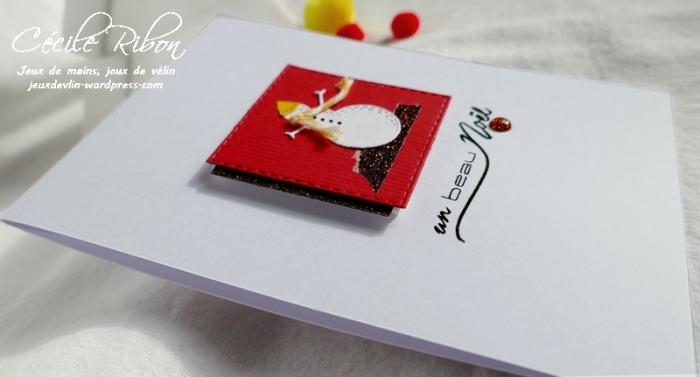 Carte CTD564 - P1090662