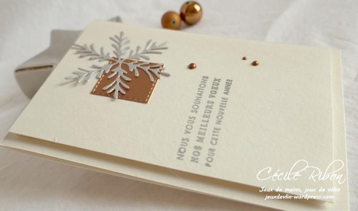 Carte CTD566 - P1100232