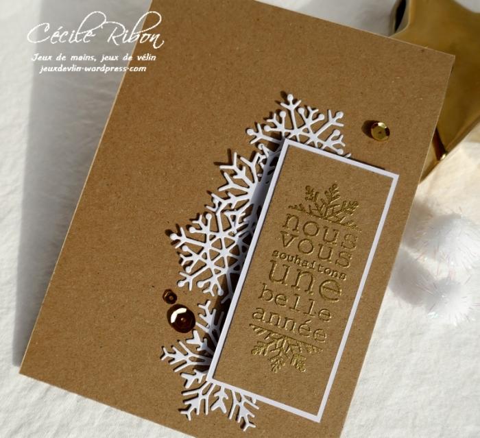 Carte CTS345#3 - P1100357