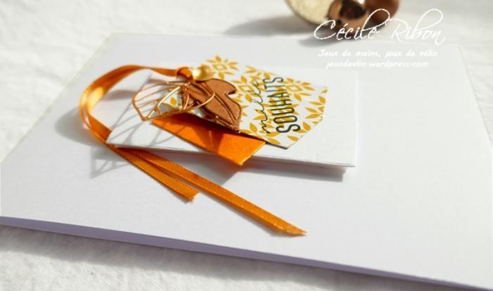 Carte SG4 - P1090415