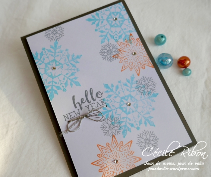 Carte CTD570 - P1110319