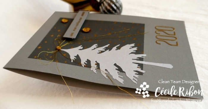Carte FMS412 - P1110122