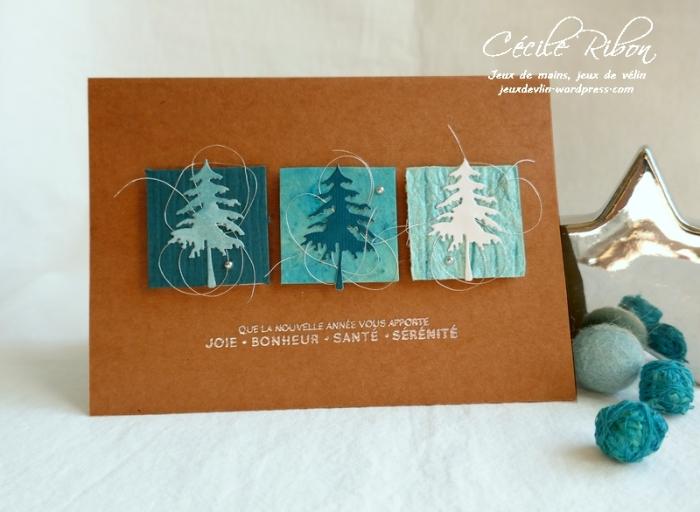 Carte JUGS514 - P1110137