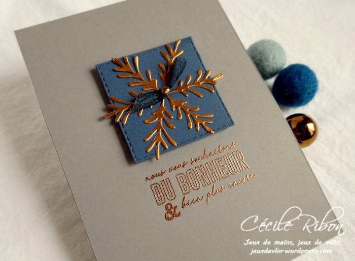 Carte LS1911#1 - P1100506