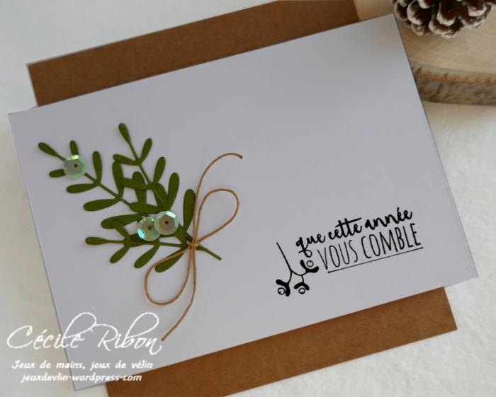 Carte SG8 - P1120960