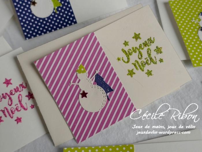 Minicartes01 - P1120544
