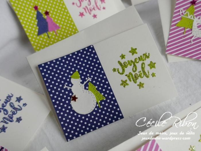 Minicartes01 - P1120547