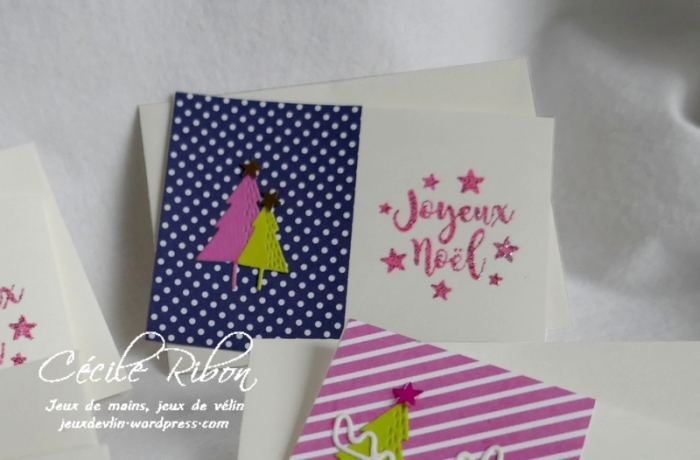 Minicartes01 - P1120549