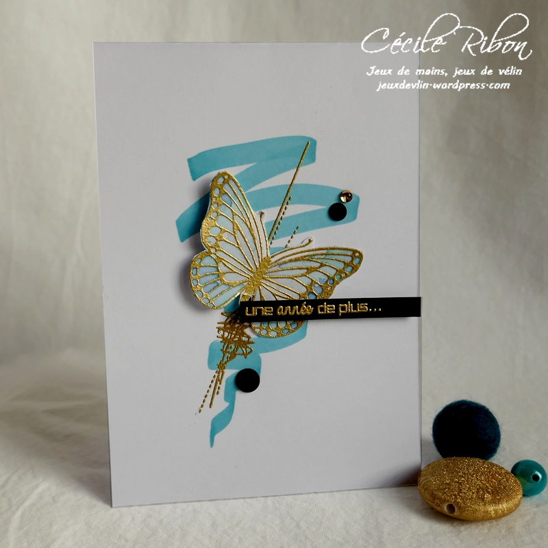 Carte AID65 - P1130033
