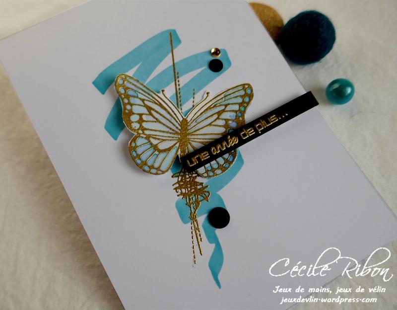 Carte AID65 - P1130048