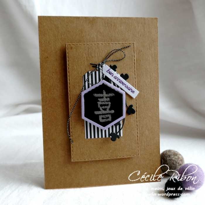 Carte AID66 - P1130233