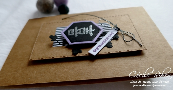 Carte AID66 - P1130243