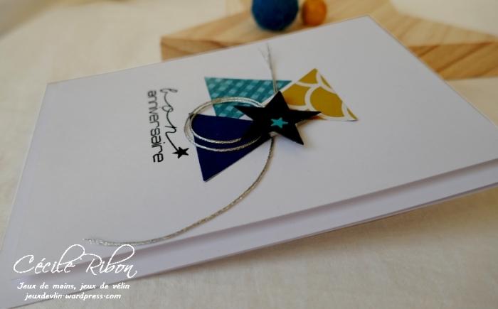 Carte CTD576 - P1130351