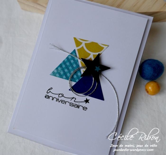 Carte CTD576 - P1130360