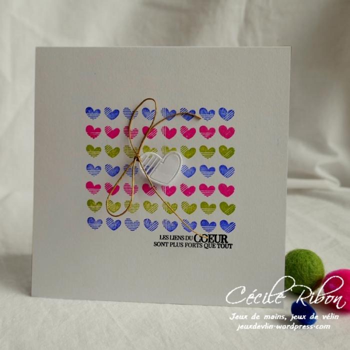 Carte CTD577 - P1130699