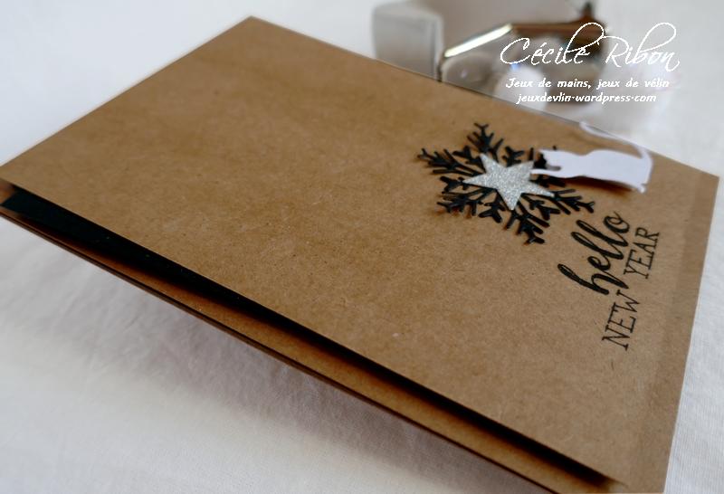 Carte CTS355 - P1130425