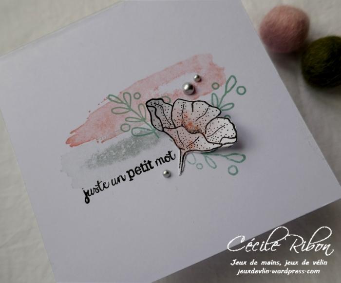 Carte CBBB24 - P1140440