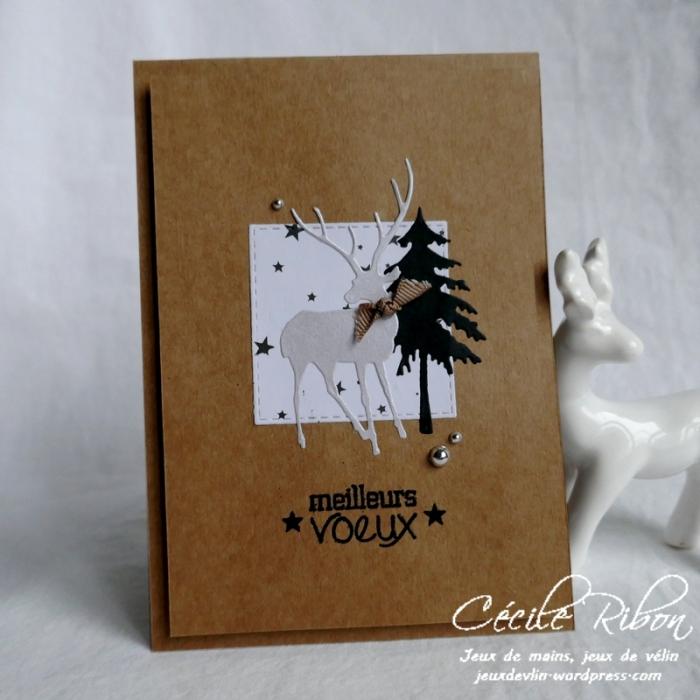 Carte Corinne - P1120702