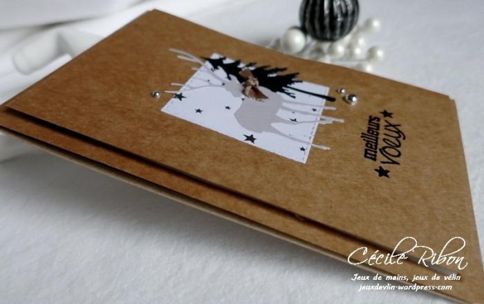 Carte Corinne - P1120714