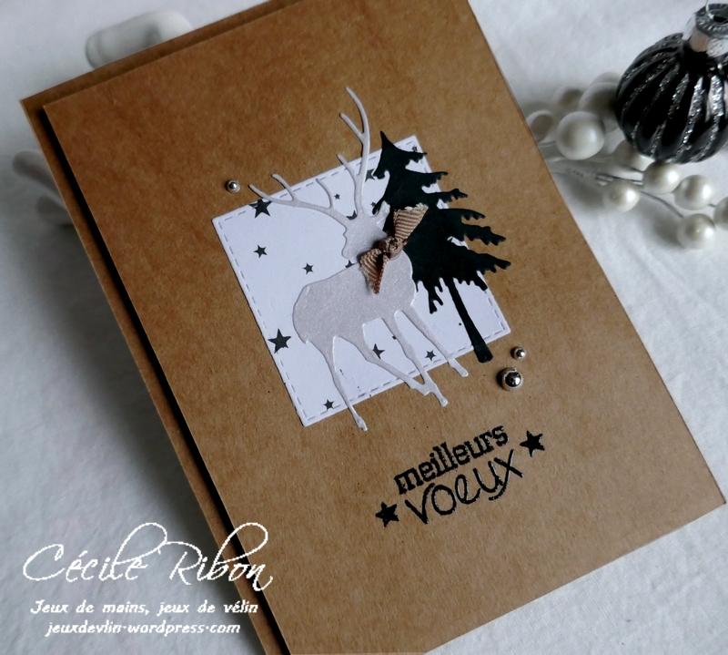Carte Corinne - P1120721