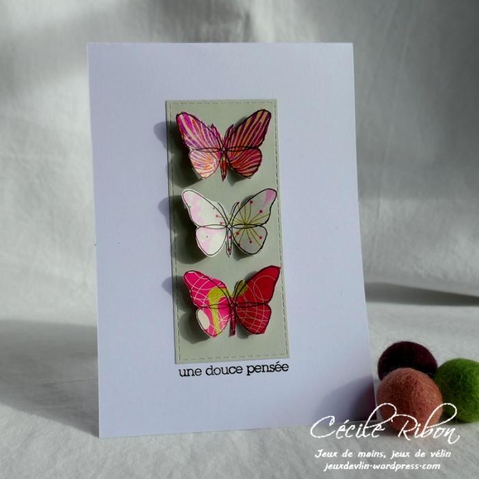 Carte CTD581 - P1150082