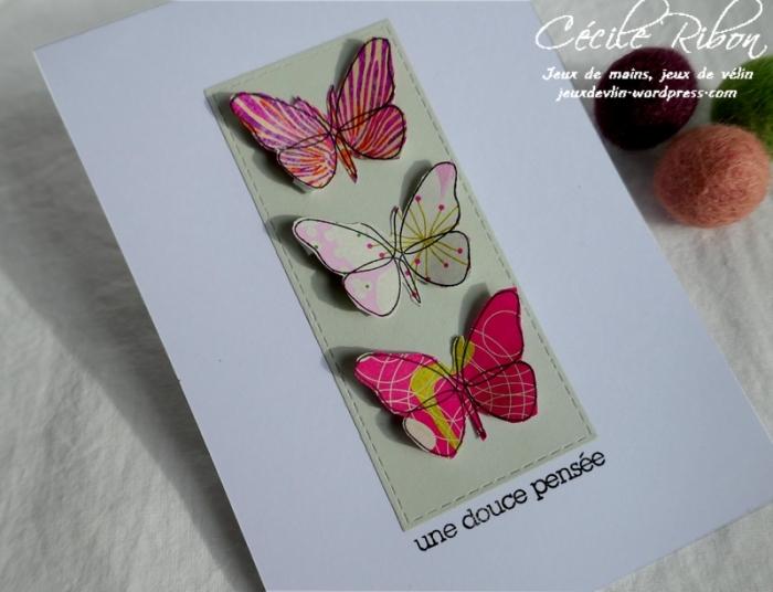 Carte CTD581 - P1150093