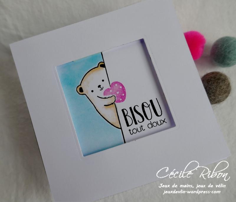 Carte CTD582 - P1150222