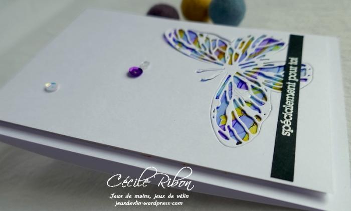 Carte CTS360 - P1150165