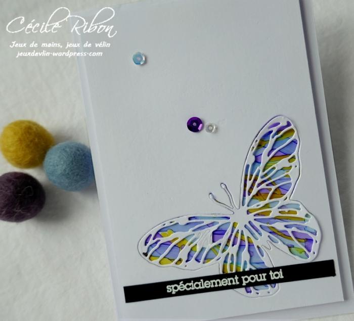 Carte CTS360 - P1150179