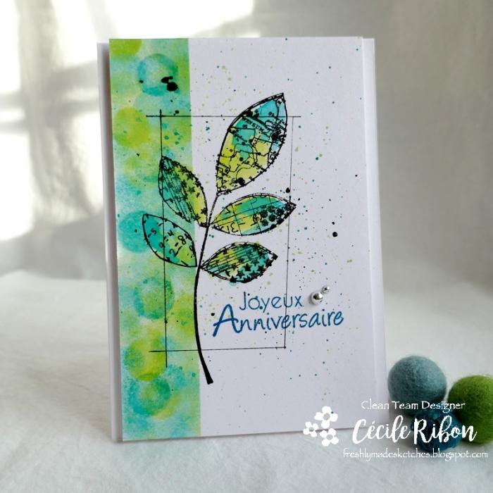 Carte FMS422 - P1140549